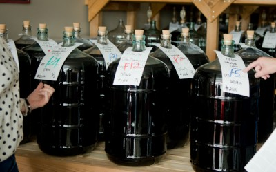The Wine-Making Process – July 2014